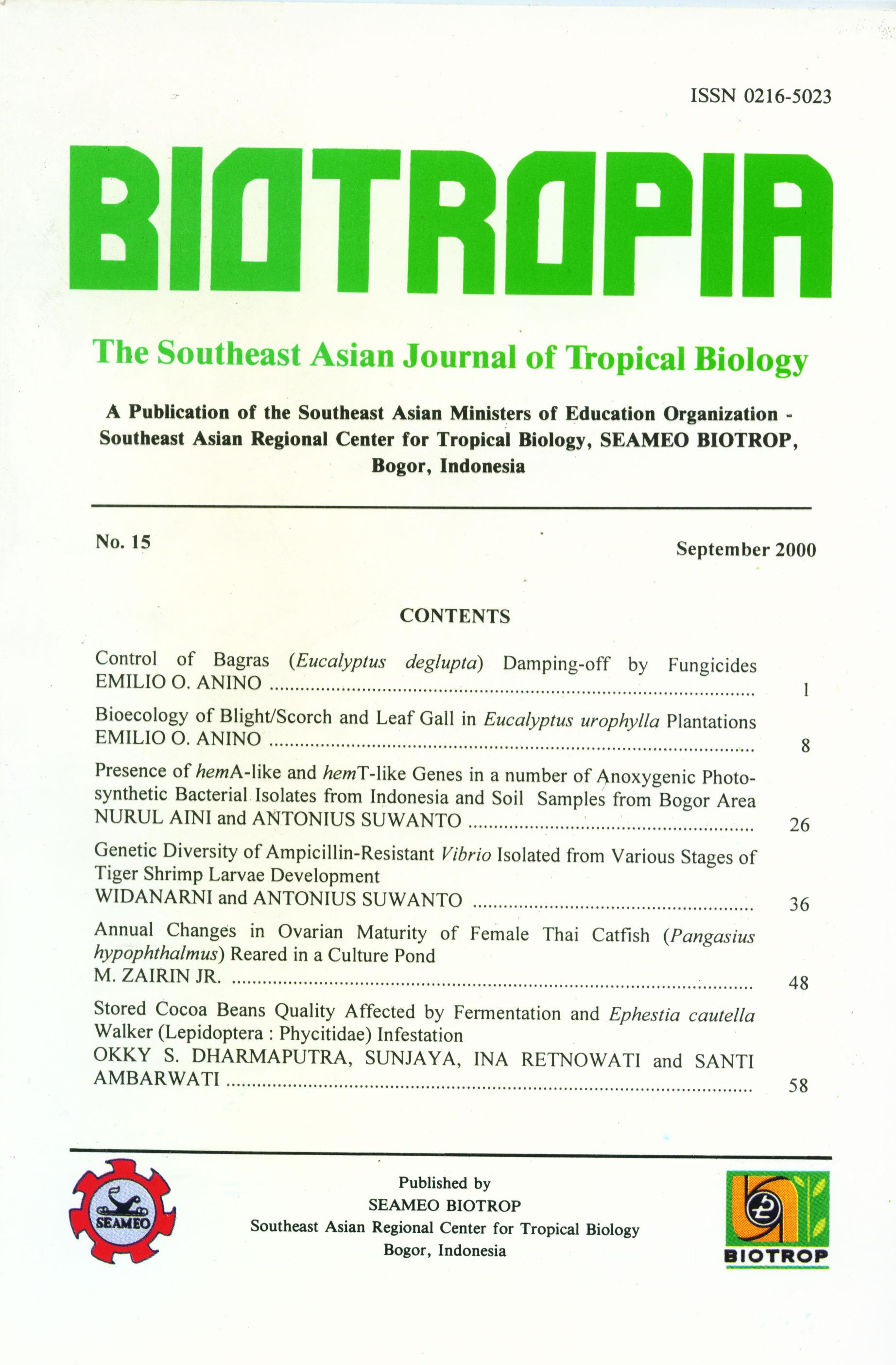 View No. 15 (2000)