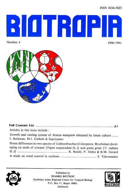View No. 4 (1991)